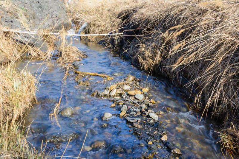 Flujo muy esperado de las calas de la primavera sobre los barrancos y las colinas en un día soleado Rápidos del agua y cascadas d foto de archivo libre de regalías