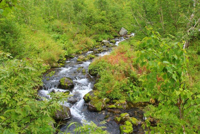 Flujos de corriente de la montaña sobre las colinas fotografía de archivo
