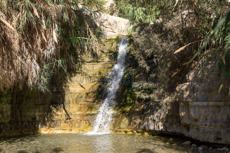 Flujos de la cascada en el lago claro foto de archivo