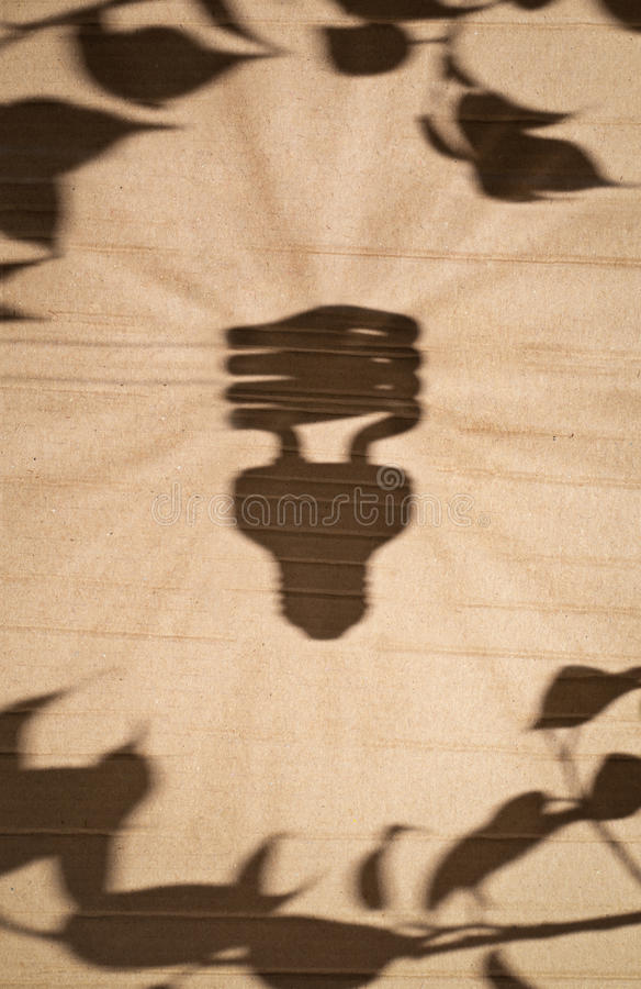 Fluorescent light bulb and tree leaves. Shadow of fluorescent light bulb and tree leaves against cardboard background royalty free stock images