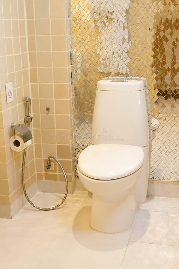 Free Flush Toilet Royalty Free Stock Photo - 22563455