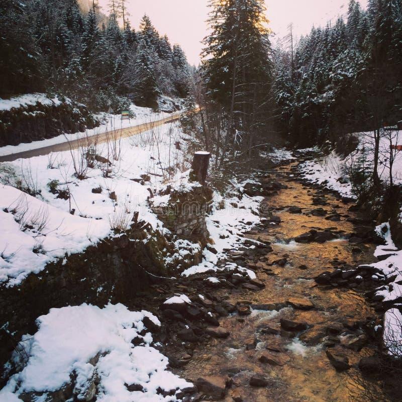 Fluss in Österreich lizenzfreie stockbilder