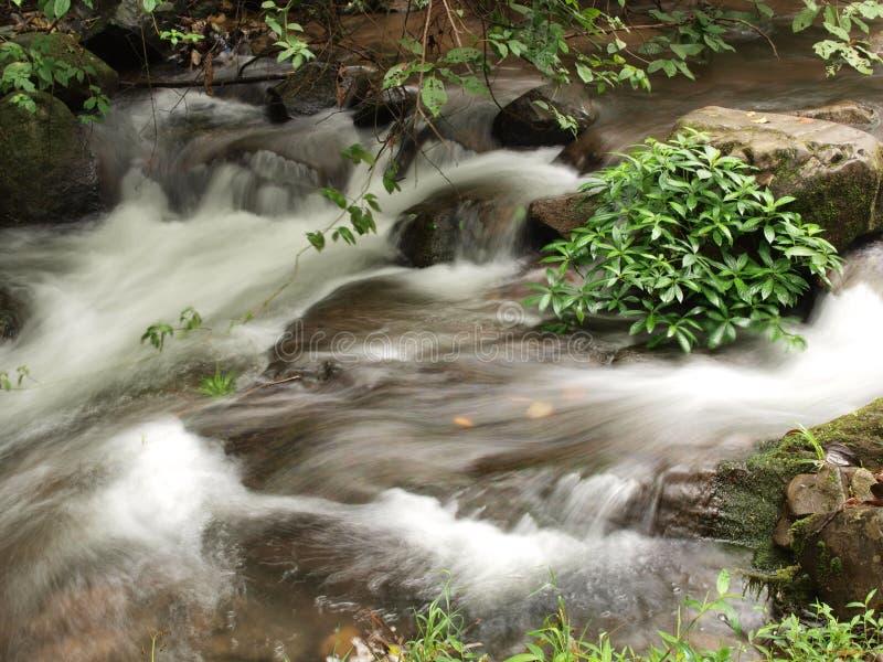Fluss stockfoto