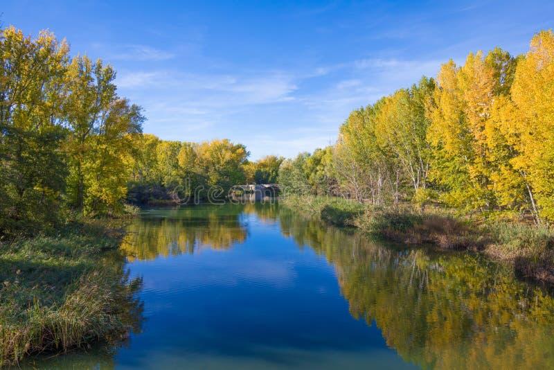 Fluss-Aas im Herbst in Palencia-Stadt stockfotografie