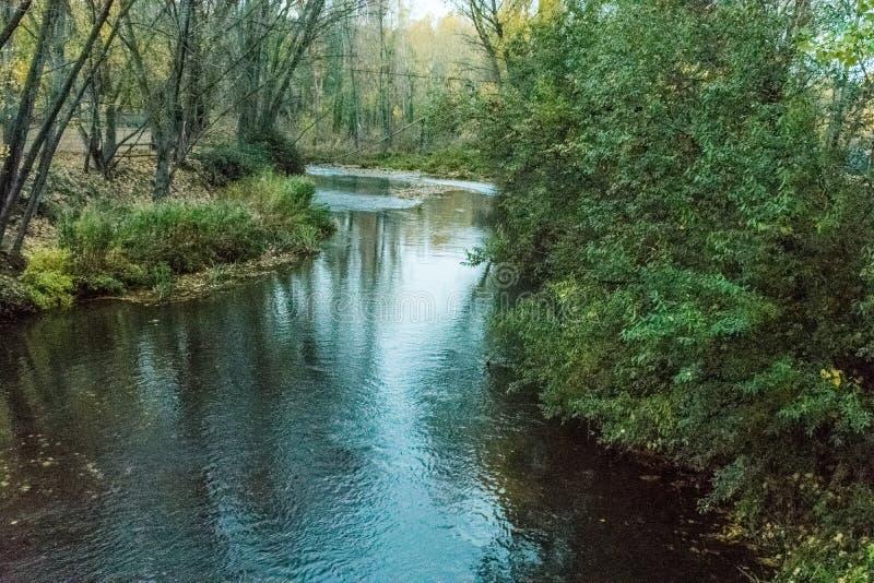 Fluss beim Überschreiten durch Stadt mit belaubten Rändern lizenzfreies stockbild