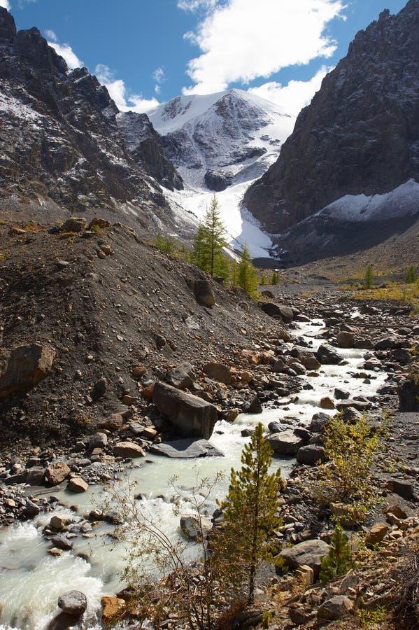 Fluss, Berge und Bäume. lizenzfreie stockbilder