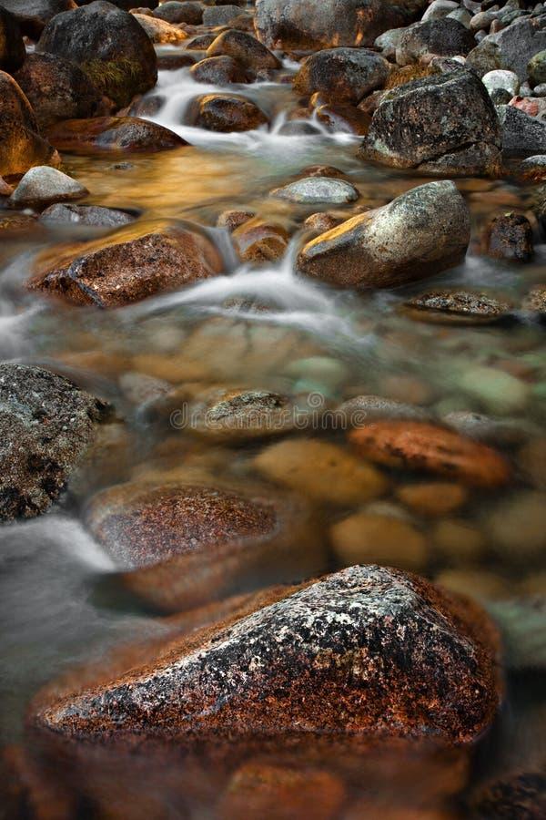 Fluss-Bett stockbilder