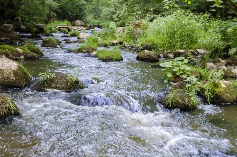 """Fluss DÅ """"kÅ ¡ ta fließt in Neris Regional Park in Litauen stockbilder"""