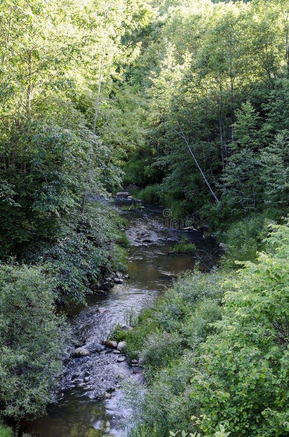 """Fluss DÅ """"kÅ ¡ ta fließt in Neris Regional Park in Litauen stockfoto"""