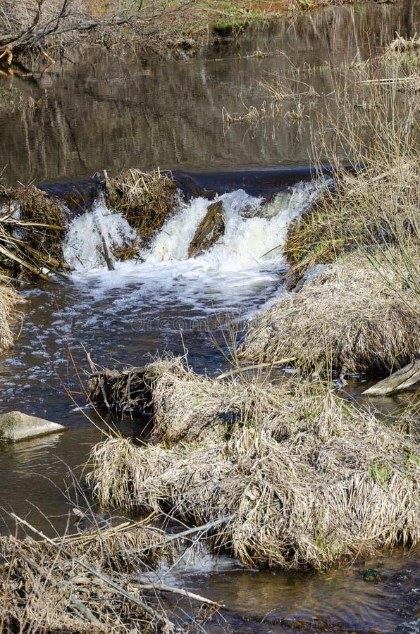"Fluss DÅ ""kÅ ¡ ta fließt in Neris Regional Park in Litauen lizenzfreie stockfotografie"