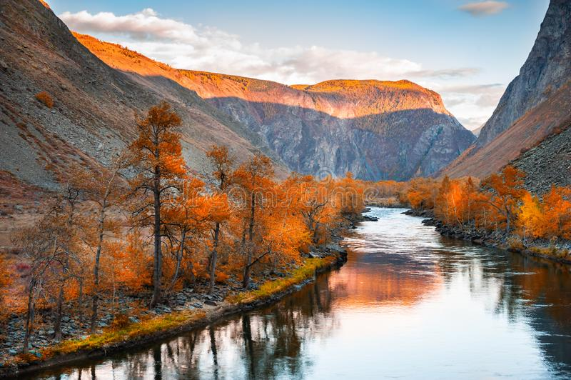 Fluss in der Gebirgsschlucht bei Sonnenuntergang, Herbstlandschaft Altai, Sibirien, Russland stockfoto