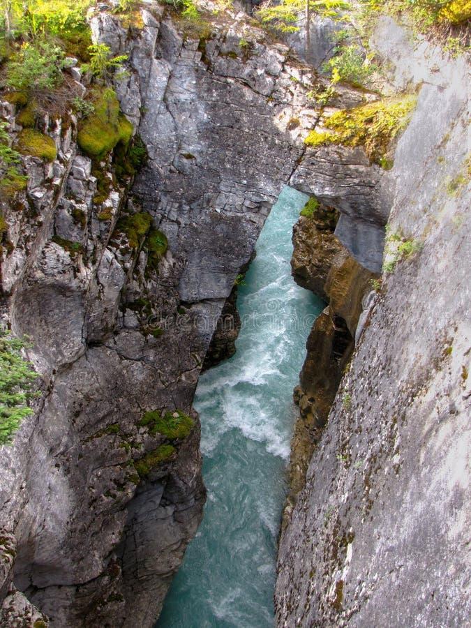Fluss, der in tiefe felsige Schlucht, Marmorschlucht, Nationalpark Kootenay, Britisch-Columbia, Kanada fließt lizenzfreie stockfotografie