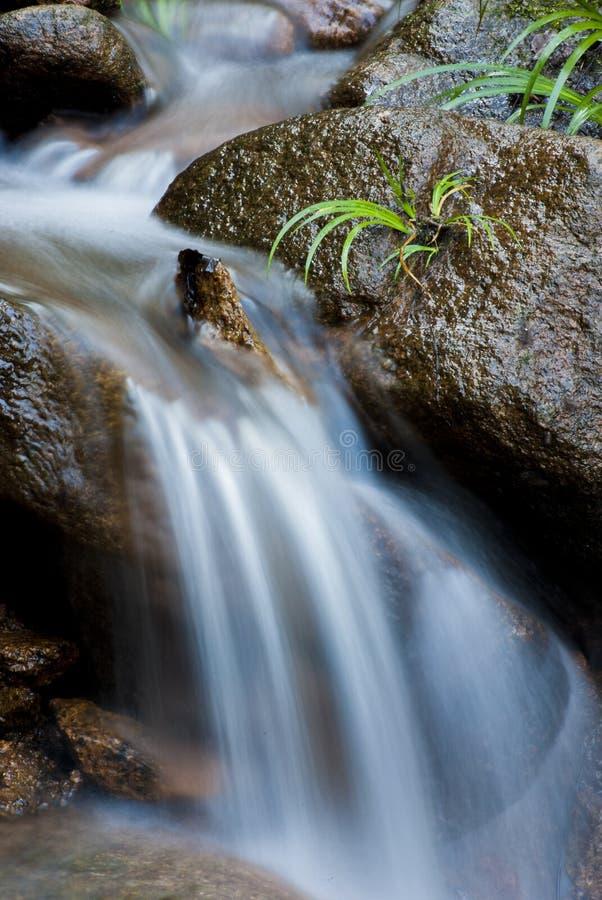 Fluss des Quellwassers stockbild