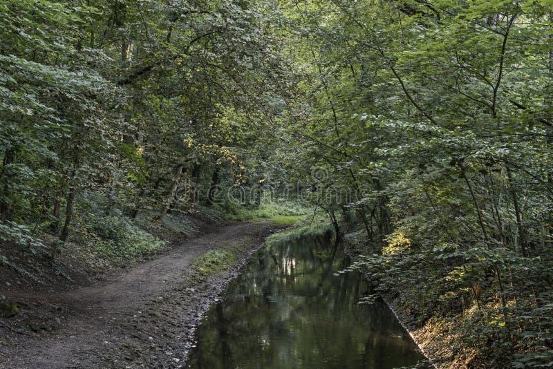 Fluss Durch Rendsburg