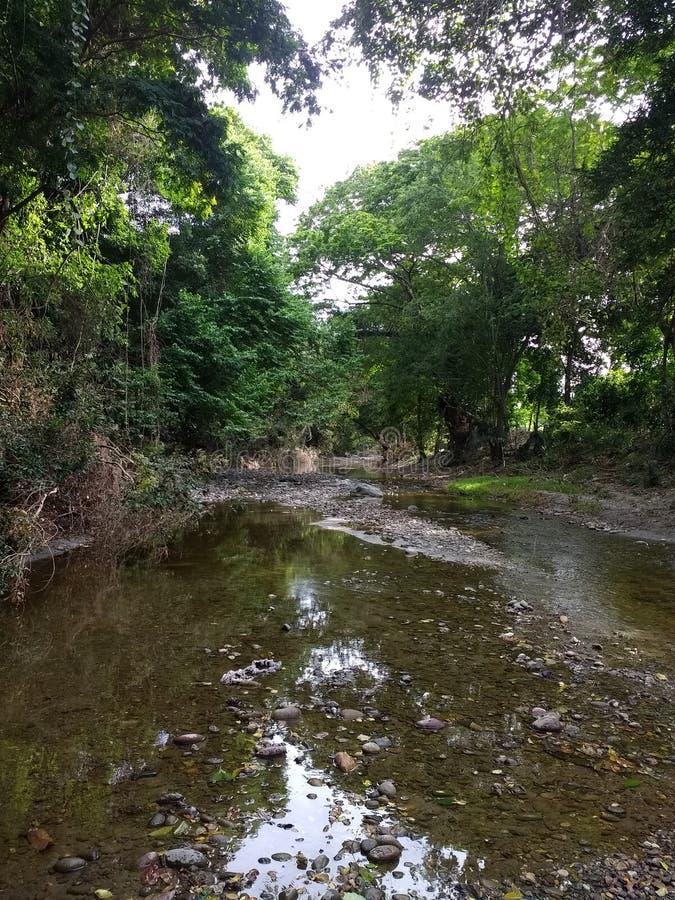 Fluss EL Tambor lizenzfreie stockbilder