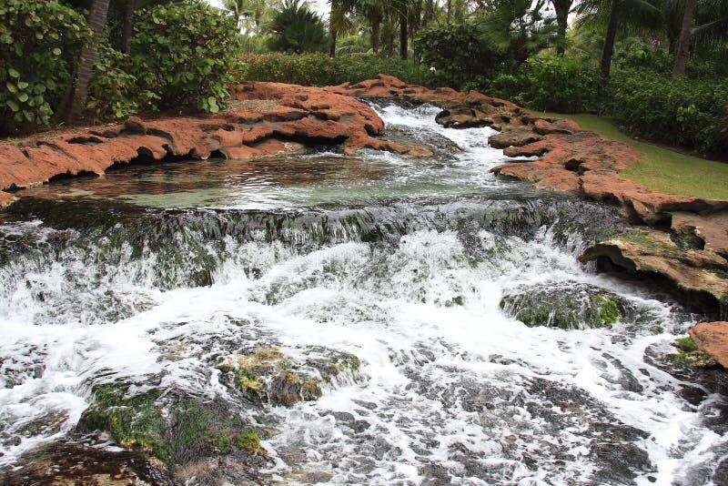 Fluss-Felsen und tropisches Grün lizenzfreie stockfotografie