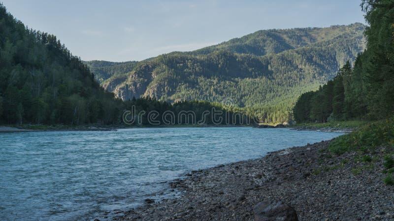 Fluss fließt entlang die Küstenlinie, die gegen den Hintergrund von Bergen und von Wäldern pebbled ist stockfotografie