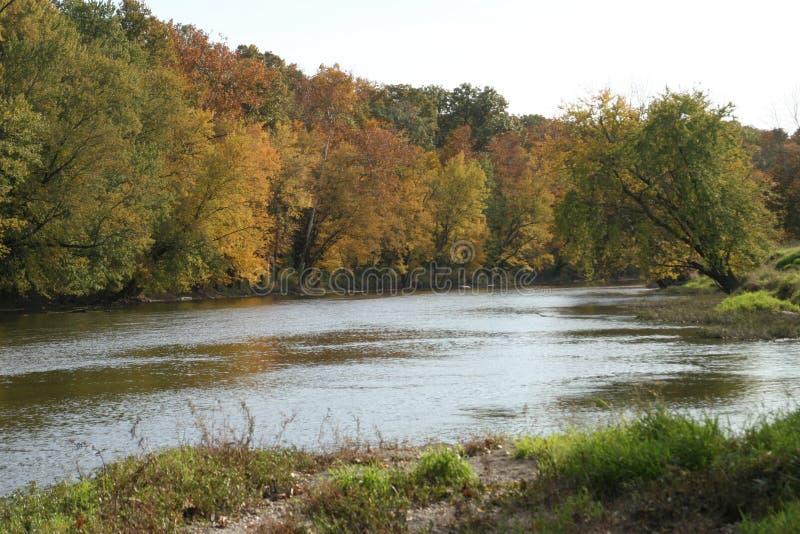Fluss Foiliage im Fall stockfoto