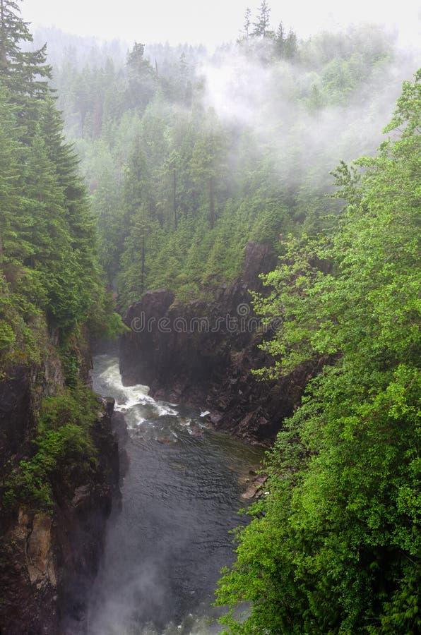 Fluss am Fuß von einer tiefen Schlucht an einem nebeligen Tag stockfotos