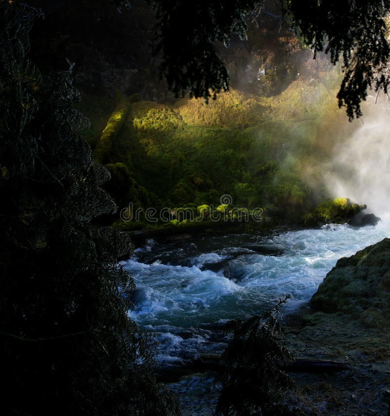 Fluss gestaltet durch Bäume lizenzfreie stockbilder