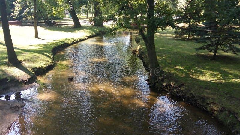Fluss im Stadtpark lizenzfreies stockbild
