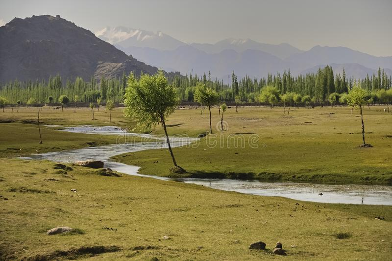 Fluss Indus, die Ebenen in Ladakh, Indien durchfließen, stockbilder
