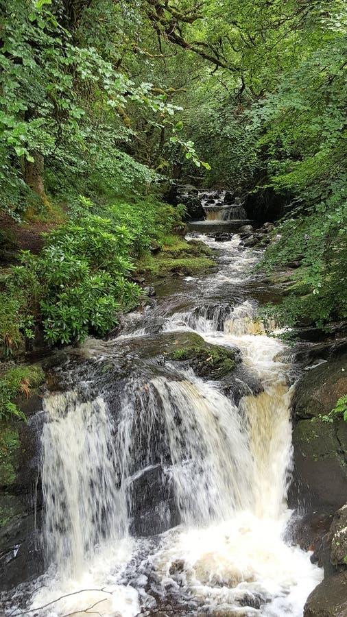 Fluss in Irland stockbilder
