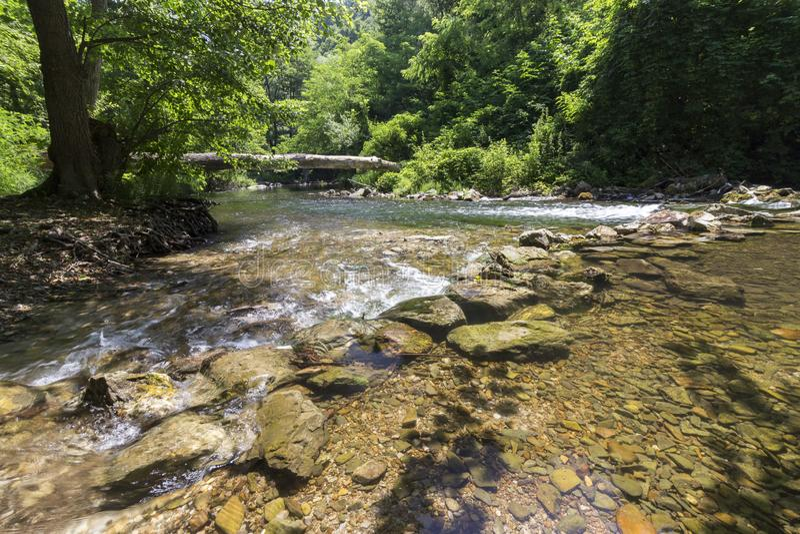 Fluss Kamchia stockfotos