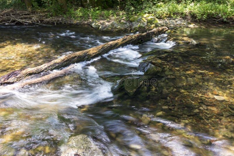 Fluss Kamchia stockbild