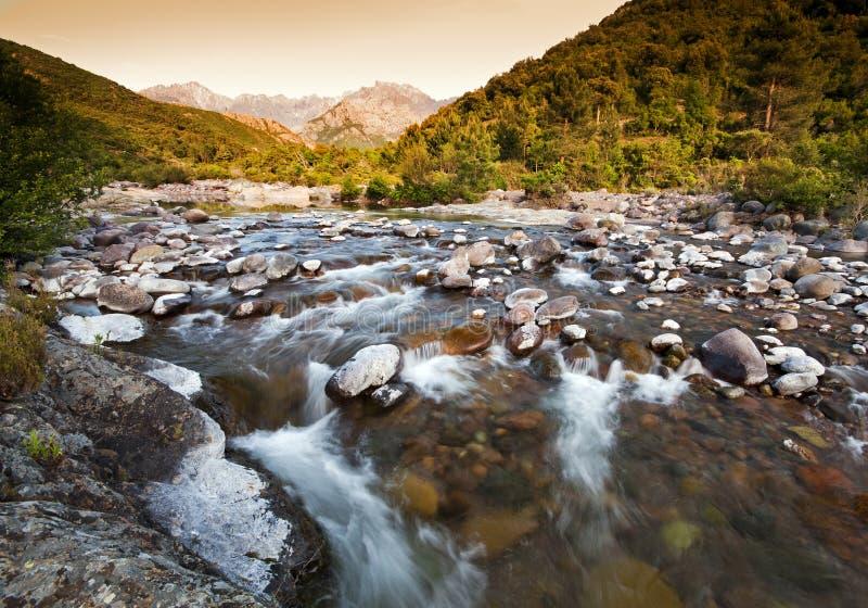 Fluss in Korsika lizenzfreie stockbilder