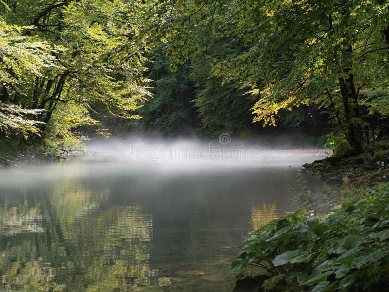 Fluss Kupa stockfoto