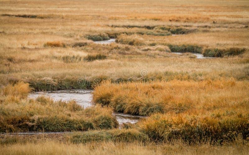 Fluss-Läufe zwar es stockfotos