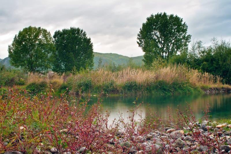 Fluss-Lagune lizenzfreie stockfotografie
