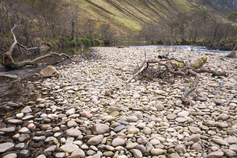 Fluss-Mandel lizenzfreie stockbilder