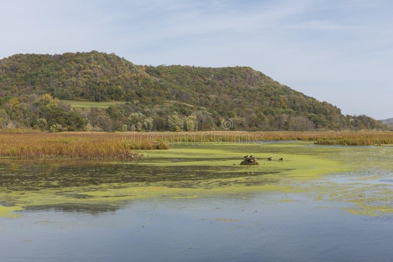 Fluss Mississipi-Stauwasser lizenzfreies stockfoto