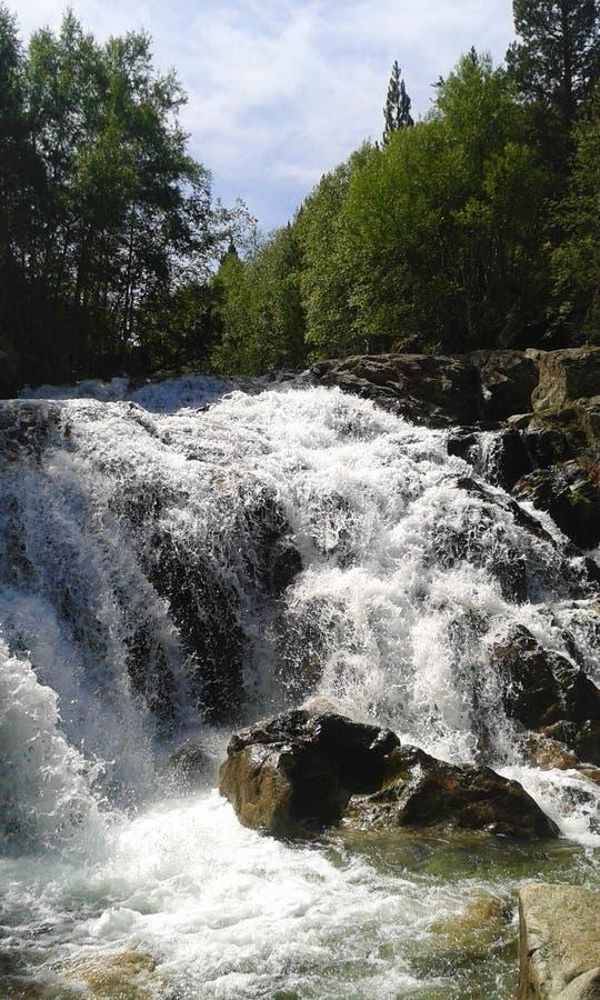 Fluss mit einem Wasserfall mitten in dem Wald stockfotografie