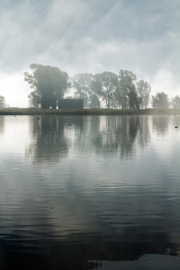 Fluss mit Nebel stockfotos