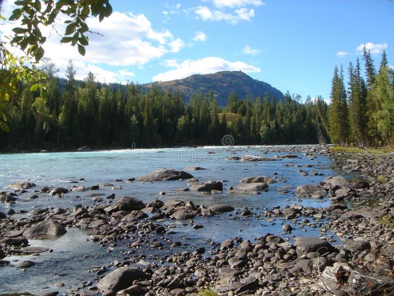 Fluss in mongolia09 lizenzfreie stockfotos