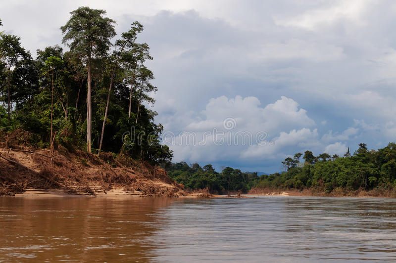 Fluss in Nationalpark Taman Negara lizenzfreie stockfotografie