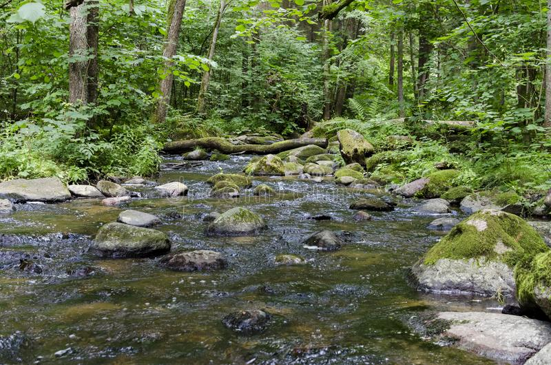 Fluss SaidÄ- fließt in Neris Regional Park in Litauen stockfotografie