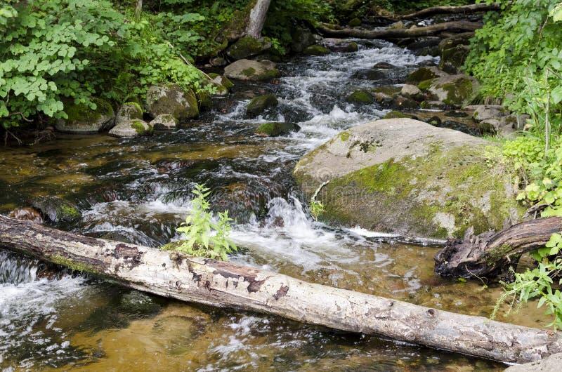 Fluss SaidÄ- fließt in Neris Regional Park in Litauen stockbilder