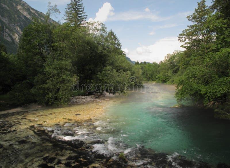 Fluss Savica über See Bohinj lizenzfreies stockfoto