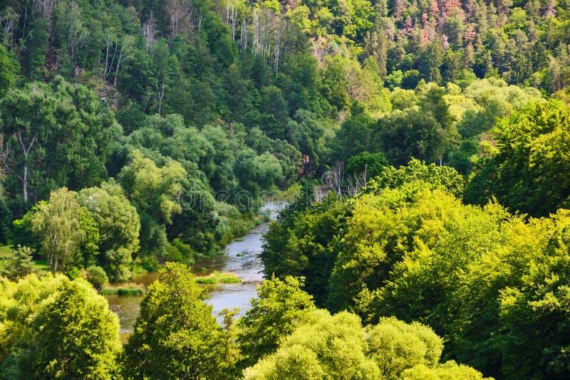 Fluss Sazava lizenzfreies stockbild