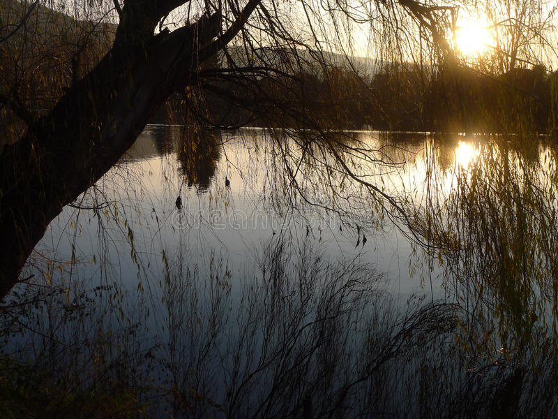 Fluss am Sonnenuntergang lizenzfreies stockbild