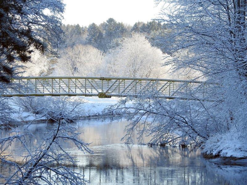 Fluss Sysa, Steg und schöne schneebedeckte Bäume, Litauen lizenzfreie stockfotos