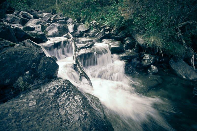Fluss tief im Gebirgswald stockfotografie