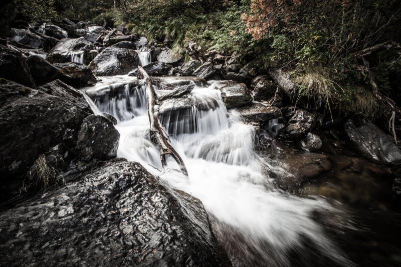 Fluss tief im Gebirgswald lizenzfreie stockfotografie
