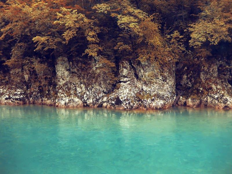 Fluss tief im Gebirgswald. Naturzusammensetzung. lizenzfreie stockbilder
