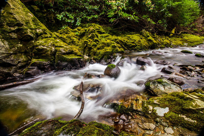 Fluss Tollymore Forest Park stockfotos