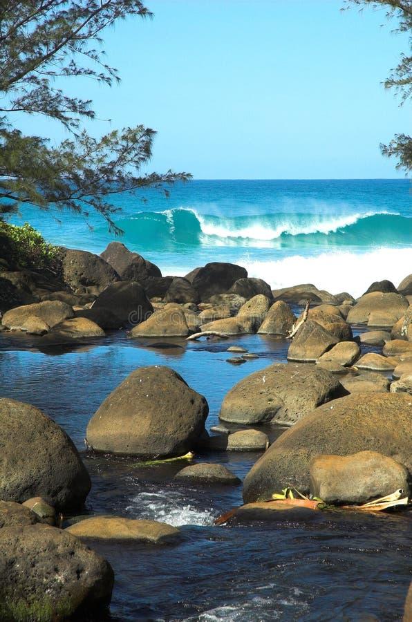 Fluss u. Strand in Kauai, Hawaii stockfotografie
